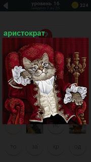В красном кресле сидит развалившись кот аристократ  в одежде