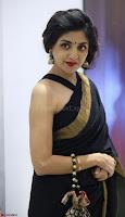 Poonam Kaur Saree New Pics 016.jpg