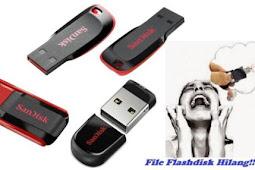 Cara Mengembalikan File Flashdisk Yang Terhapus Secara Manual Atau Via Software