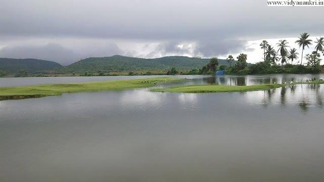 www.vidyanaukri.in