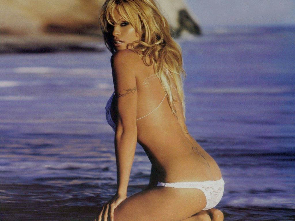 Pamela Anderson Hot Pictures, Photo Gallery  Wallpapers -6701