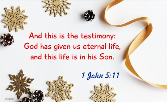 1 John 5:11 picture Bible verse