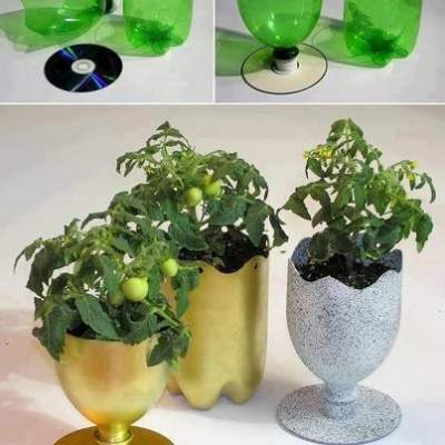 creative gardening with waste bottles