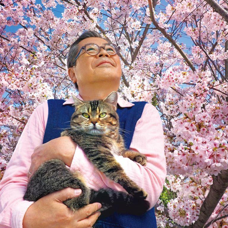 Film Jepang 2019 The Island of Cats (Neko to Jiichan)