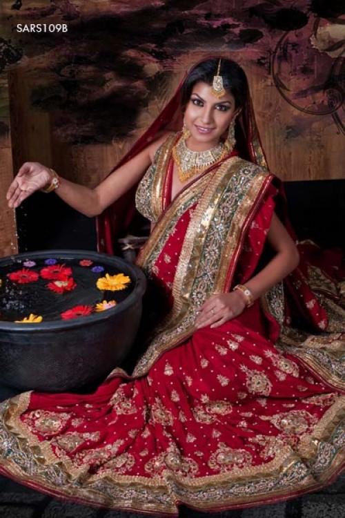 Saree World: World Expensive Saree