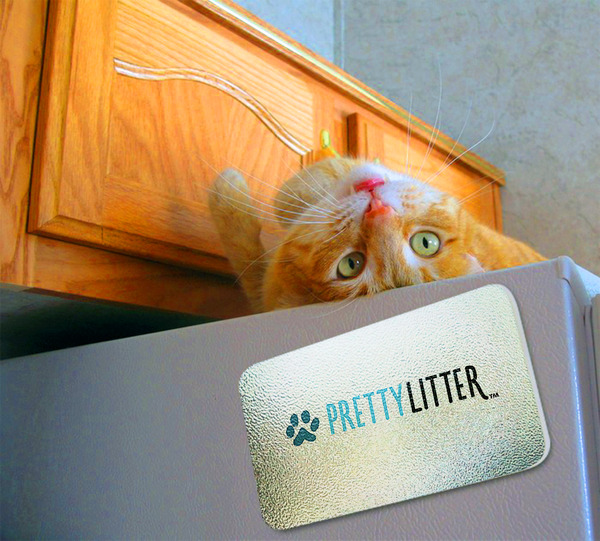 Benefits of using PrettyLitter for you cat by Barbies Beauty Bits