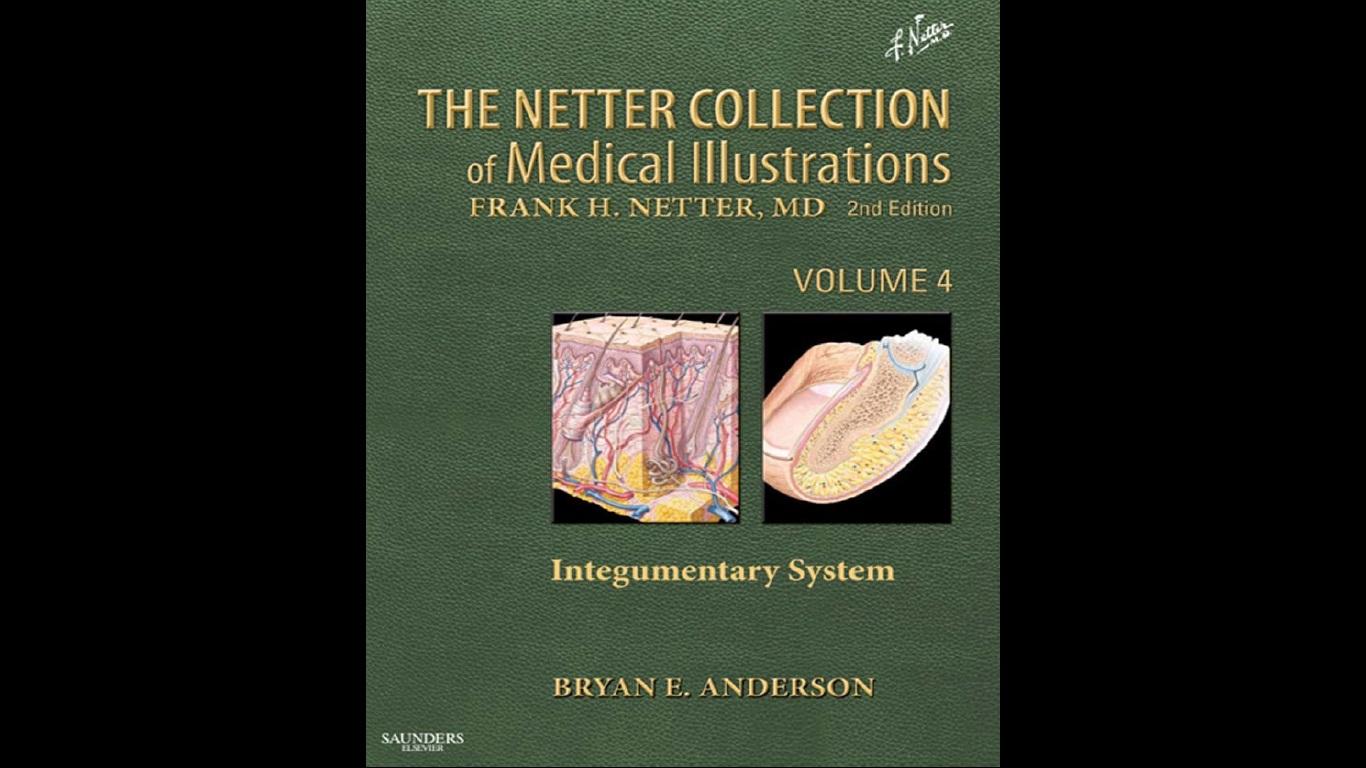 Atlas of Human Anatomy Sobotta v1.5 (CD-ROM) | Books 4 Homeopathy ...