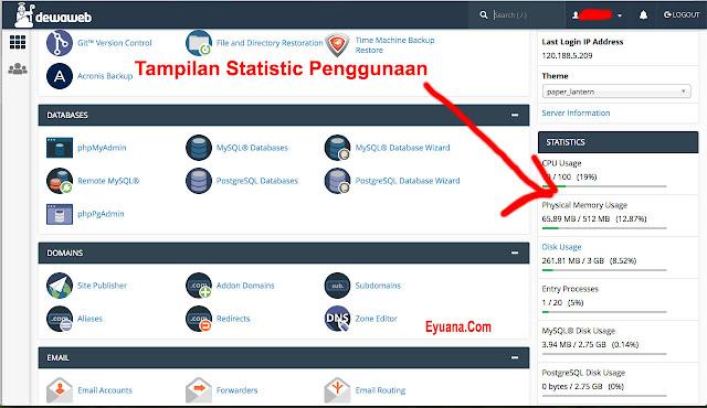 tampilan statistik cpanel untuk online