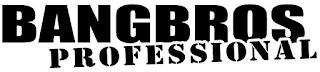 BangBros Download