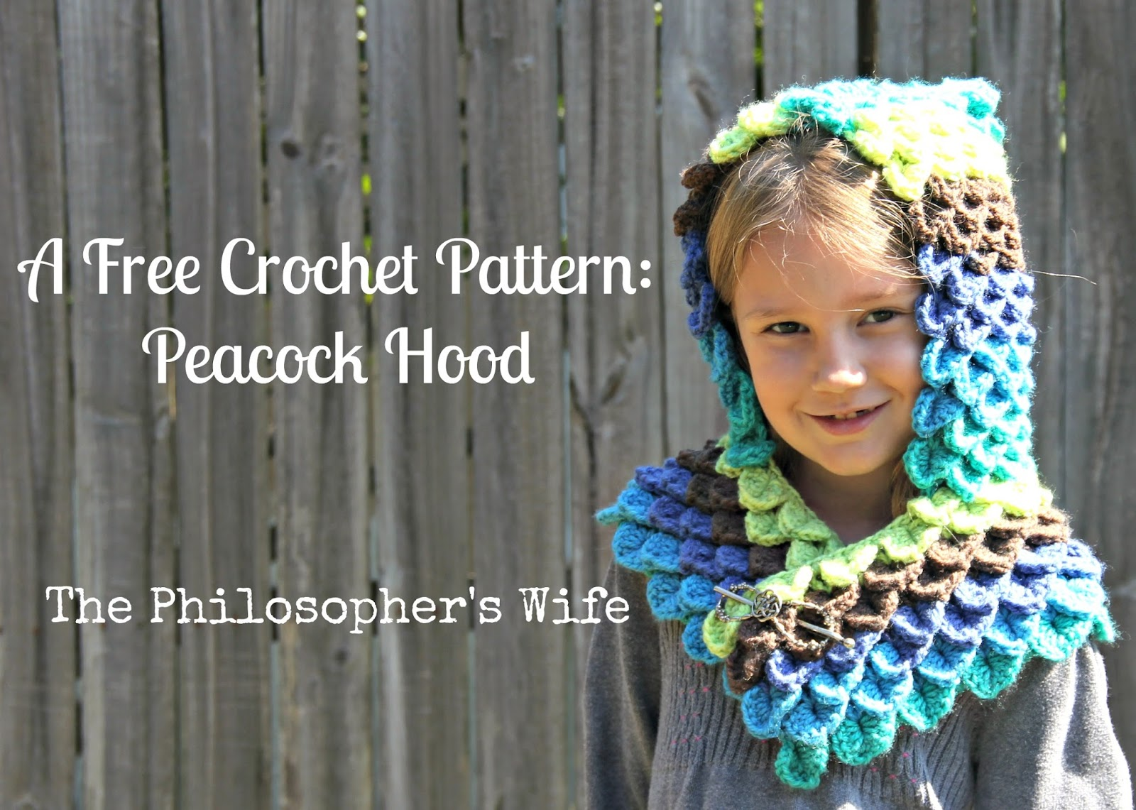 The philosophers wife a free crochet pattern peacock hood i loved crocheting this peacock hood i was lucky enough to get my hands on a couple of caron cakes in gelato during the initial release bankloansurffo Images