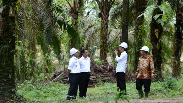 Ini Sederet Tanah Milik Jokowi dan Prabowo
