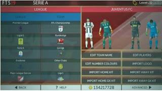FTS 19 Mod Liga Indonesia Apk