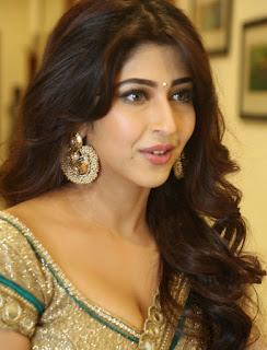 Sonarika Bhadoria Stills in Designer Saree at Eedo Rakam Aado Rakam Movie Audio Launch ~ Celebs Next