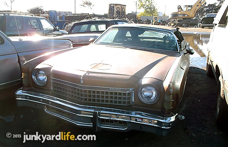 1974 Chevy Monte Carlo has a clean design, wide-mouth grill with 66 squares above the bumper.