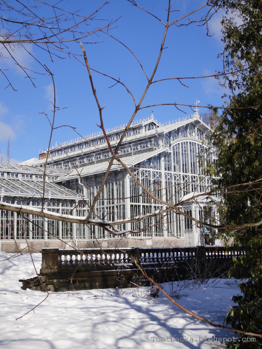 Winter Garden Helsinki