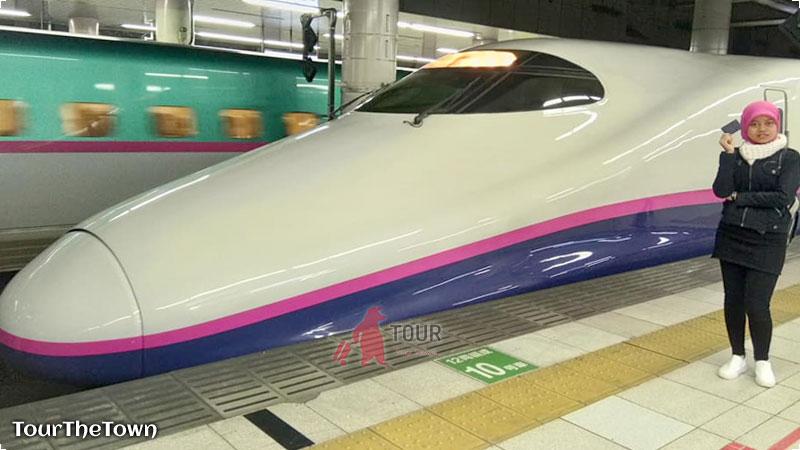 Shinkansen TOKYO Wide Pass