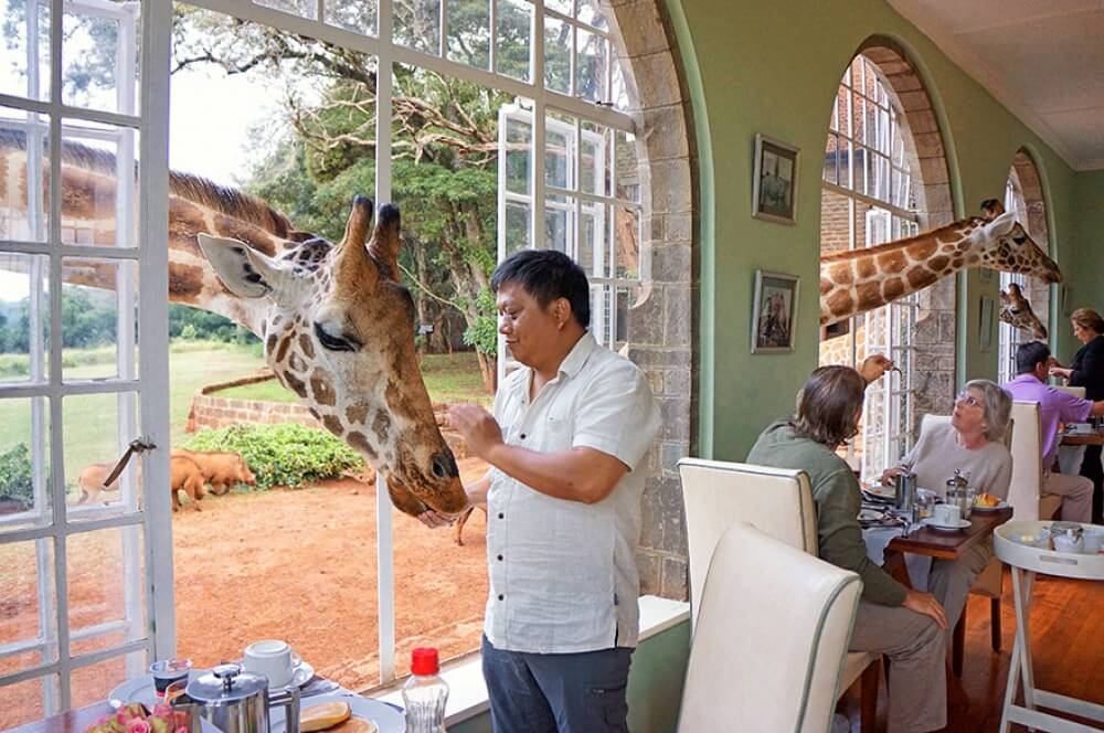 22 Stunning Hotels That Will Make You Want to Book Your Next Trip NOW! - Giraffe Manor, Kenya