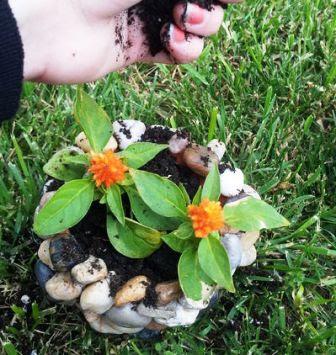 4 dit pot tanaman cantik dari batu sungai