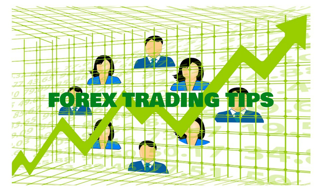 Forex trading advice