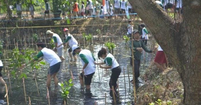 Pengetan Hari Pohon Nasional, 5.000 Wit Ditandur Ing Alas