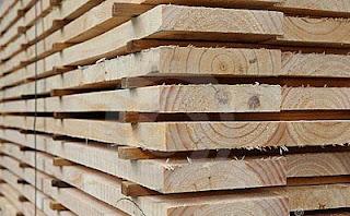gia công cưa xẻ sấy gỗ Thông 2