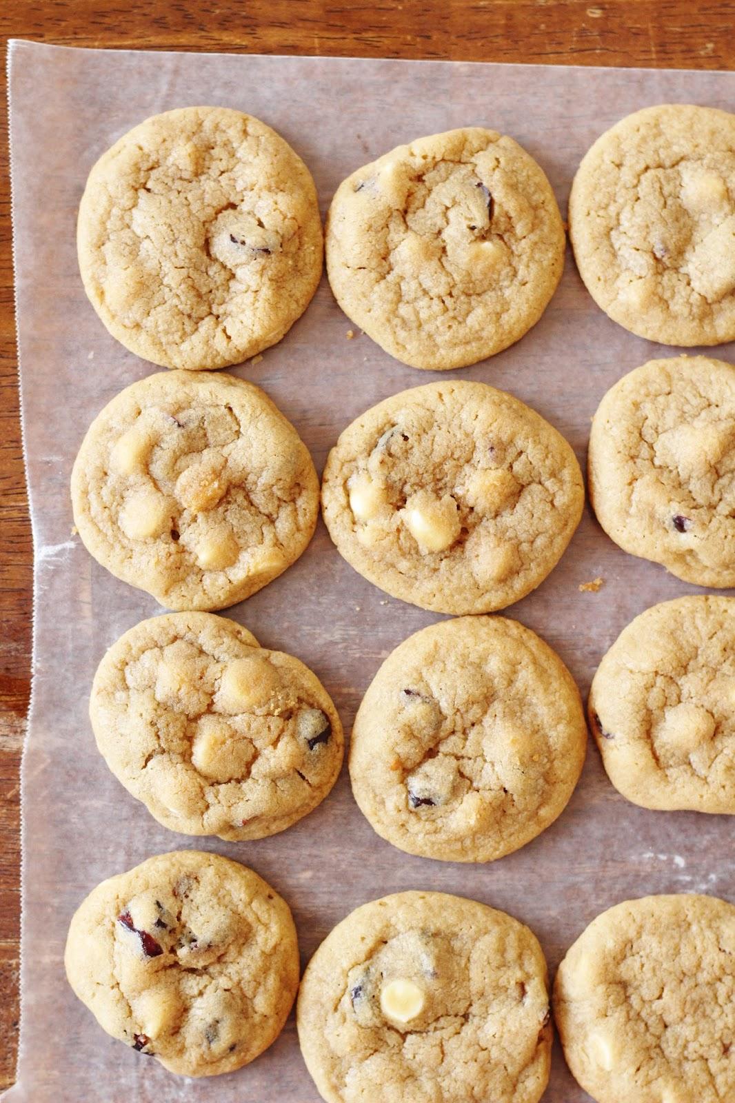craisin cookies