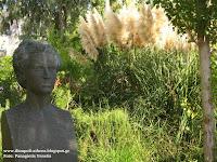 http://ilioupoli-athens.blogspot.gr/2015/10/1884-1951.html