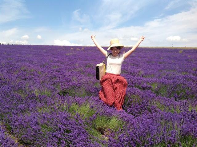 cánh đồng hoa oải hương đẹp nhất thế giới 6