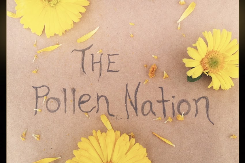 The Pollen Nation