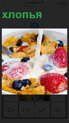 в тарелке лежат хлопья с ягодами и молоко наливают