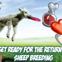 Get Ready For The Return Of SHEEP BREEDING