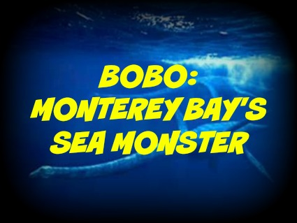Bobo: Monterey Bay's Sea Monster