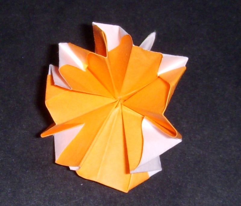 Origami origami carnation origami carnation is simple on complexity level and is similar to origami buttonhole flower except the last step where you fold the petal tips in exposing mightylinksfo