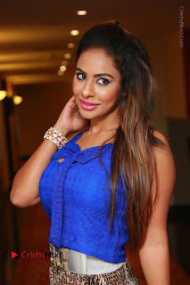 Telugu Actress Srilekha Reddy Latest HD Pos in Sleeveless Blue Top at Muse Art Gallery  0017.JPG