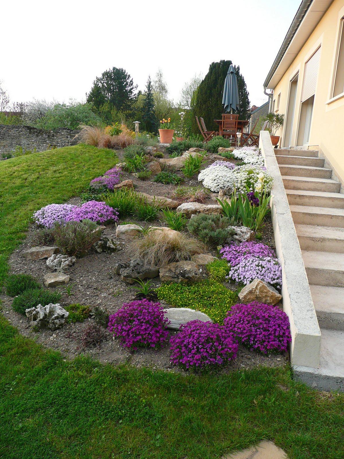 Jardin Rocaille Plantes | La Région De L 39étang Dans Un Jardin ...