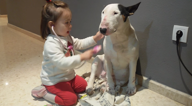 This Cute Little Doctor And Her Patient Patient Will Melt Your Heart