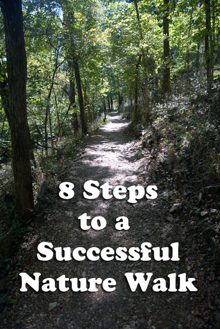 8 Steps to a Successful Nature Walk