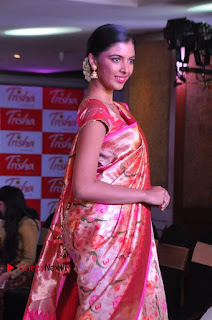 South Indian Celebrities Pos at Love For Handloom Collection Fashion Show  0118.jpg