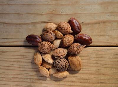 kacang dan biji bijian