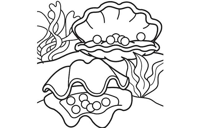 concha de mar con perlas para pintar