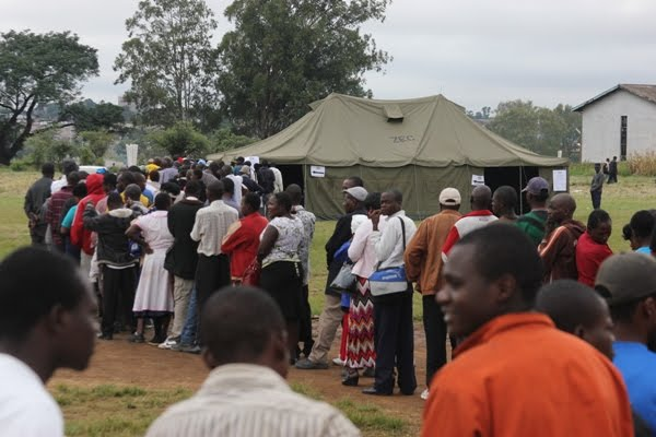 ZESN notes intimidation of aspiring voters