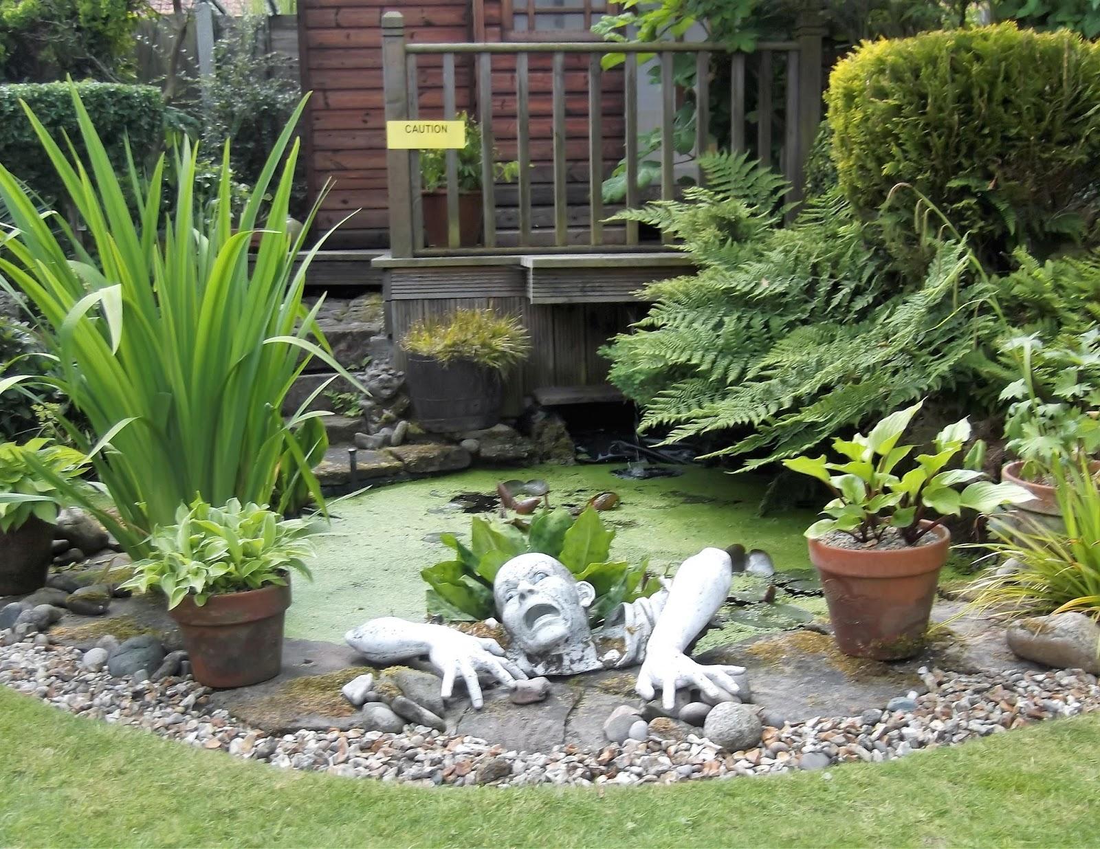 Themayoralblog Viv Rimmer Shaws Rd A Succulent Garden