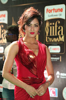 Videesha in Spicy Floor Length Red Sleeveless Gown at IIFA Utsavam Awards 2017  Day 2  Exclusive 24.JPG