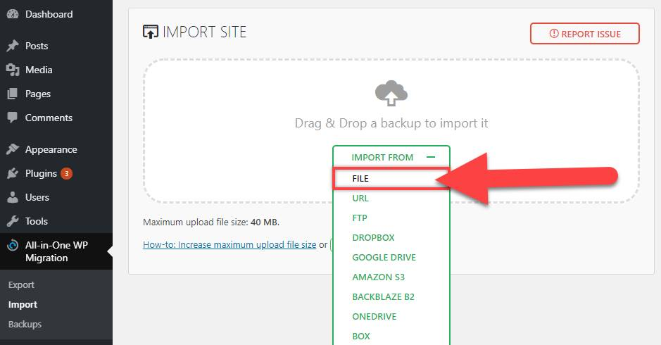 Import The Website