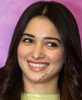 Telugu Actress Tamannaah Beautiful Long Hair Face Closeup (5)