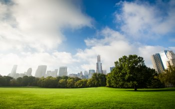 Wallpaper: New York Central Park