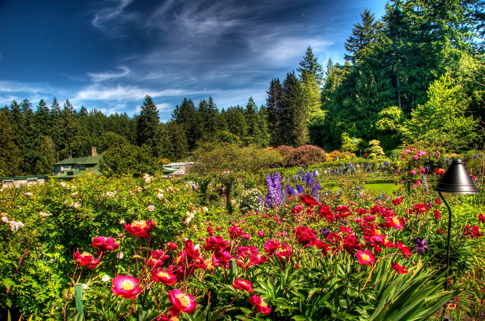 Arte Y Jardineria Trucos De Jardineria