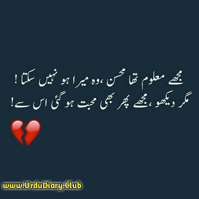 Urdu Sad Poetry - Muje maloom tha mohsin wo mera ho nahi skta