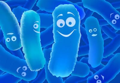 Đại lý bán lợi khuẩn bifido quận 10 TP Hồ Chí Minh