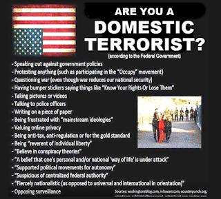Domestic terrorism in the united states essay